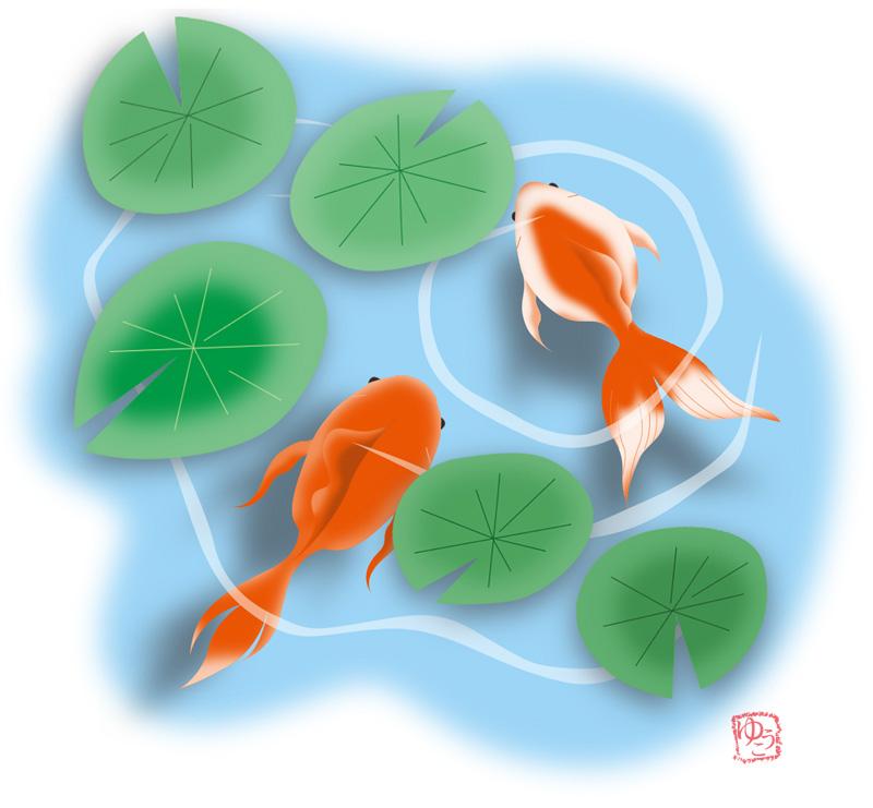 イラスト 夏 金魚 なかがわゆうこ イラスト無料素材のイラスト屋さん イラスト発注 イラストレーター募集も